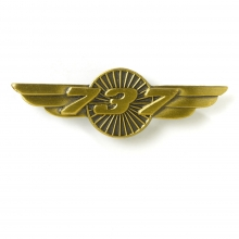 B737 Wings Pin
