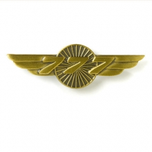 777 Wings Pin