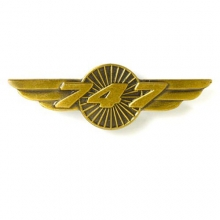 B747 Wings Pin