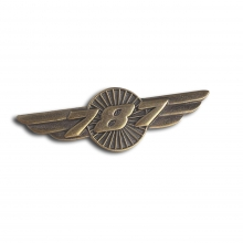 B787 Wings Pin