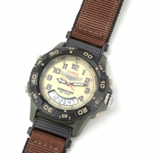 Timex Pilot Wings Watch