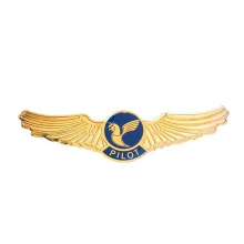 Iran Air Wing
